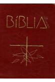 Bíblia de Aparecida - Média de zíper marrom