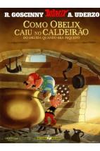 Como Obelix caiu no caldeirão do druida quando era pequeno